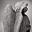 The wings of angels - iconography by Norman Repacholi