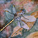 dragonfly by derekmccrea