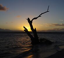 Sunset - Bribie Island, Qld by clay2510