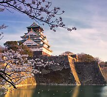 Late Afternoon Sun, Osaka Castle, Japan. by mikeofthethomas