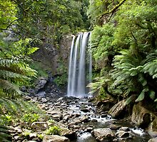 Hopetaun Falls Portrait by martyturnbull