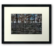 vineyard in early morning light Framed Print