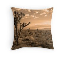 Death Valley Solitude Throw Pillow