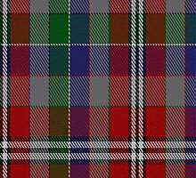 01741 Brinkie's Brae Tartan Fabric Print Iphone Case by Detnecs2013