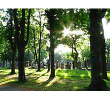 Zentralfriedhof Photographic Print