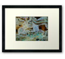 Ecosystem (Moss Agate) Framed Print