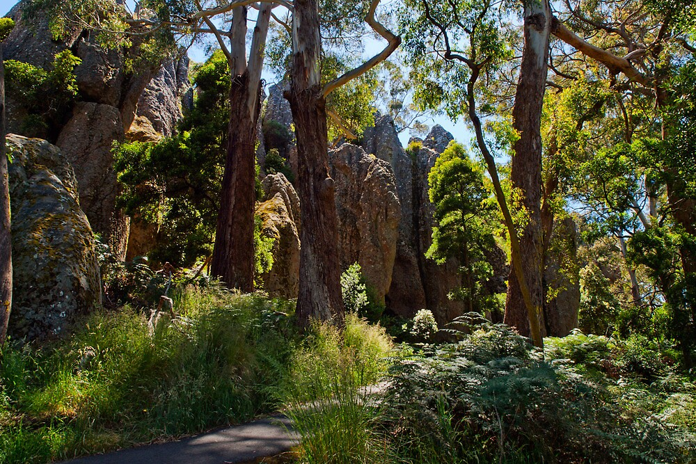 The Path to Hanging Rock - revisited by John Sharp