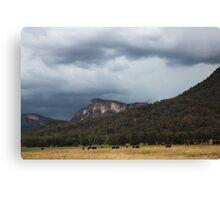 Glen Davis Mountains Canvas Print
