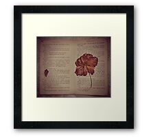 Words And Reality  Framed Print