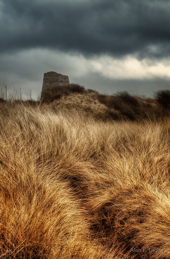 Tower in the Dunes by Alan E Taylor