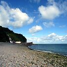 Clovelly Seafront by trish725