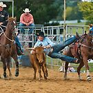 Steer Wrestling 2 by Werner Padarin