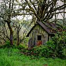 Just An Old Shack by Charles & Patricia   Harkins ~ Picture Oregon