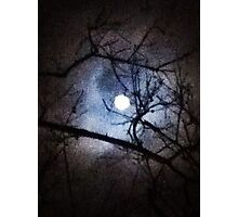 The Full Moon Between Branches Photographic Print