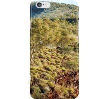Landscape above Junction pool, Karijini iPhone Case/Skin
