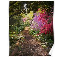 A Walk down the Garden Path Poster