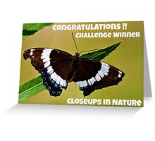 Closeups in Nature Challenge winner entry Greeting Card