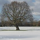 Snow in Kent by victor55