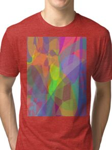 Sunlight in the Room Tri-blend T-Shirt