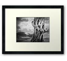 World Tree Framed Print