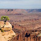 Canyonlands II, Utah by Erwin G. Kotzab