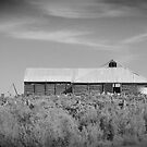 Old Time Woolshed by peasticks
