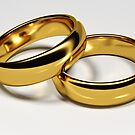 Wedding rings by Kagrafi