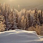 Nothern winter Landscape by Johan nordholm