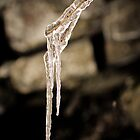 Frozen twig by Johan nordholm