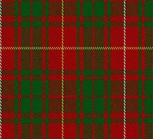 01785 Bruce (Vestiarium) Clan/Family Tartan Fabric Print Iphone Case by Detnecs2013