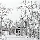 Homestead Pen & Ink Sample by Jack Brauer