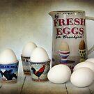 Fresh Eggs for Breakfast by Amanda White