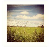 Irish Green Fields Art Print