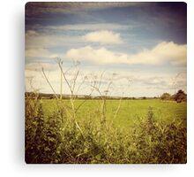 Irish Green Fields Canvas Print