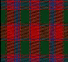 01790 Old Bruce Clan/Family Tartan Fabric Print Iphone Case by Detnecs2013