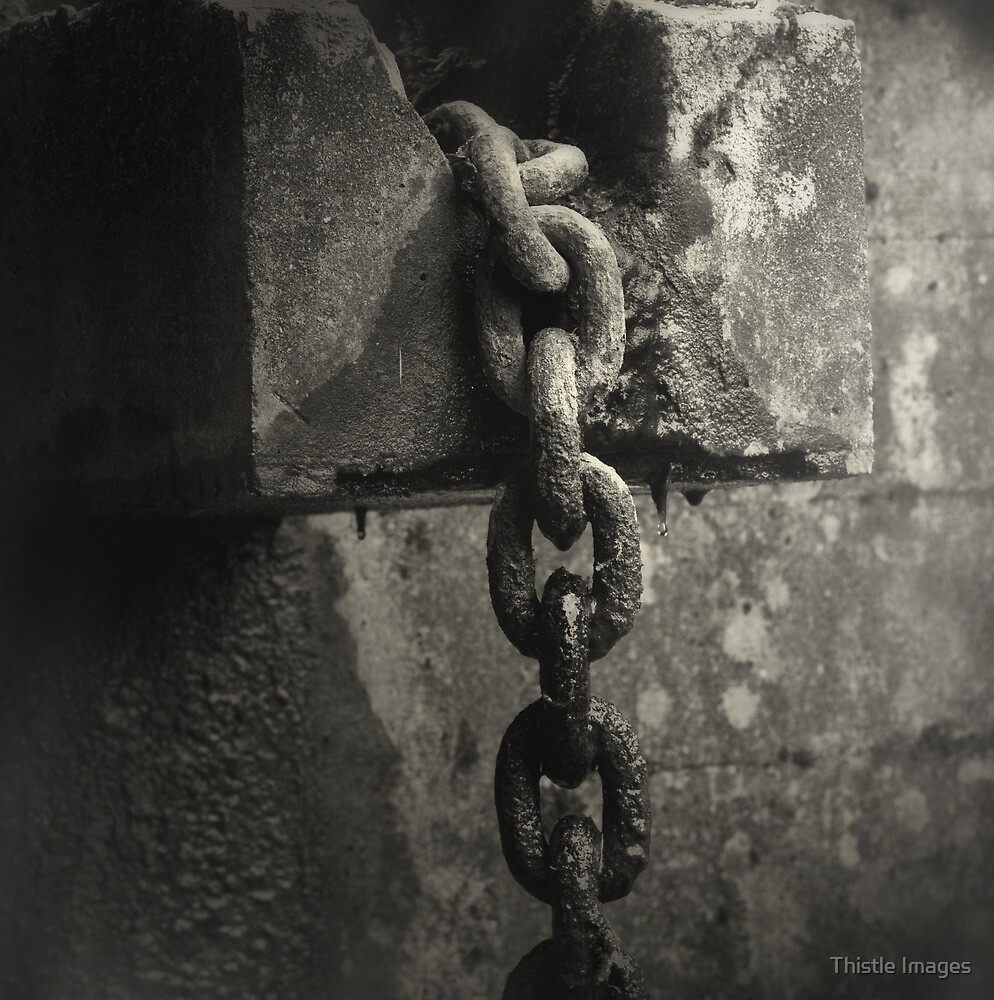 Old Chain by Linda  Morrison