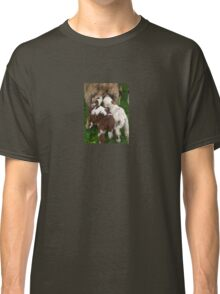 Twin Lambs Suckling From Their Mother Classic T-Shirt