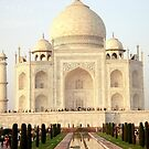 The Taj Mahal Landscape by Arvind Singh