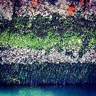 Rusty Boat Layers by lanesloo