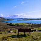 The Summer Isles by jacqi
