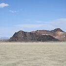"The ""Black Rock"" at Black Rock Desert,outside Gerlach,Nevada,USA by Anthony & Nancy  Leake"