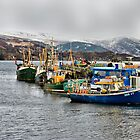 Boats in Ullapool Harbour by jacqi
