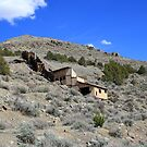 Abandoned on the side of the mountain, Cold Springs,(Reno) Nevada USA by Anthony & Nancy  Leake