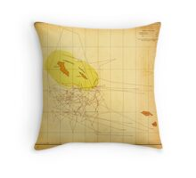 Chart Showing Where the Seals Were Taken (1892) Throw Pillow