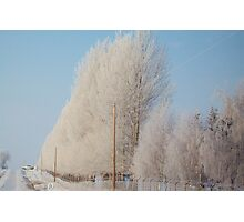 Frosty Mornings Photographic Print