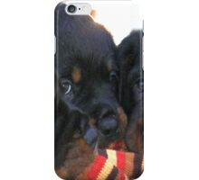 Three Rottweiler Puppies Playing Tug iPhone Case/Skin