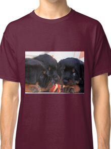 Three Rottweiler Puppies Playing Tug Classic T-Shirt