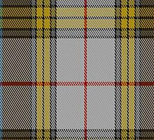 01809 Buchanan Dress Clan/Family Tartan Fabric Print Iphone Case by Detnecs2013