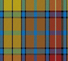 01815 Buchanan Variant Fashion Tartan Fabric Print Iphone Case by Detnecs2013