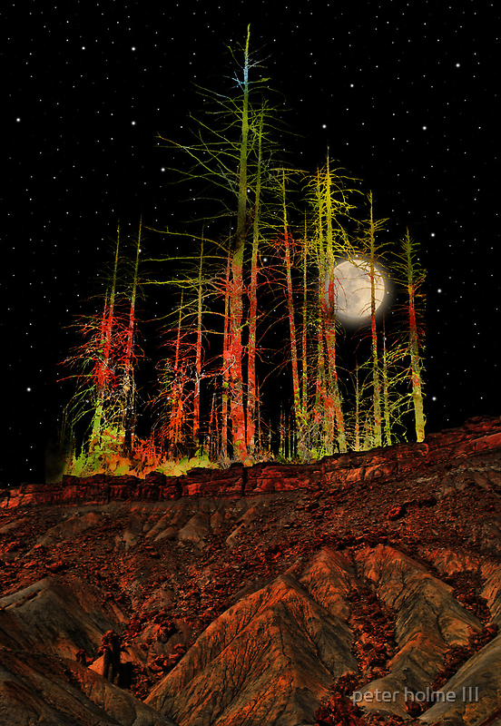 2806 by peter holme III